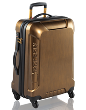 luggage delsey